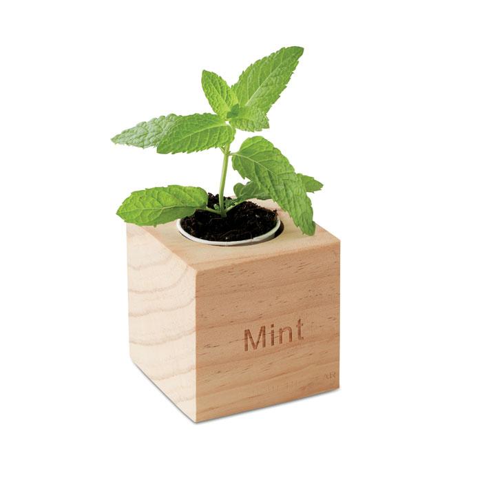 Kweekset, munt in houten pot